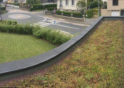 Toit-terrasse végétalisée